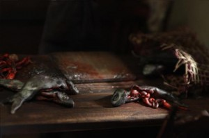 Crossed Sild