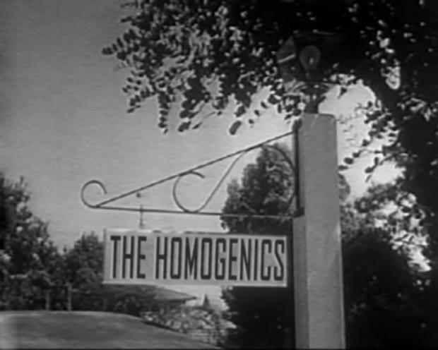 The Homogenics