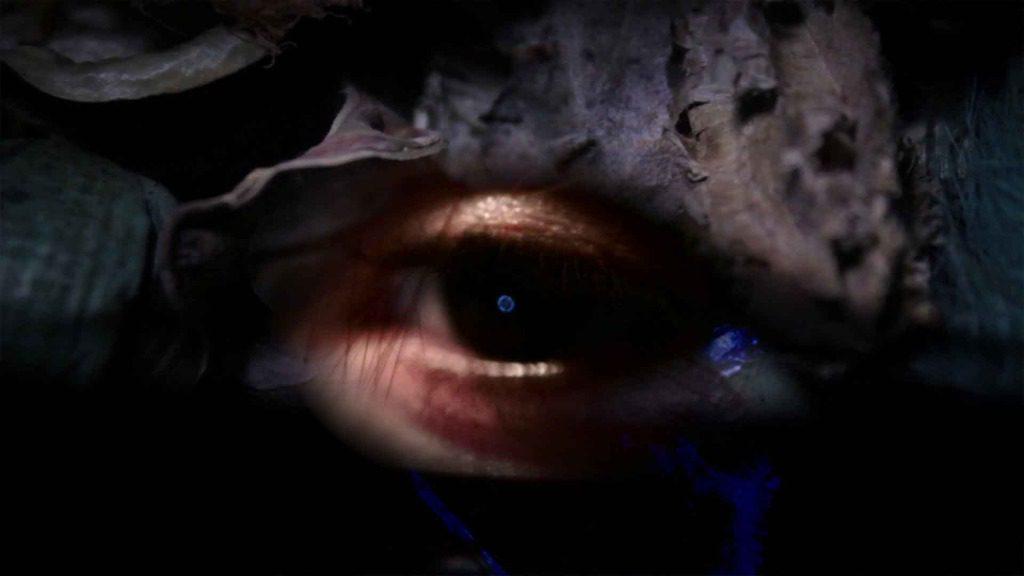 41°45'N 12°40'E: Tormentato da un' Amore senza oggetto, scopre l'Acqua di un lago di Fuoco e la sua Flora.