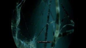 neuroni 3_1